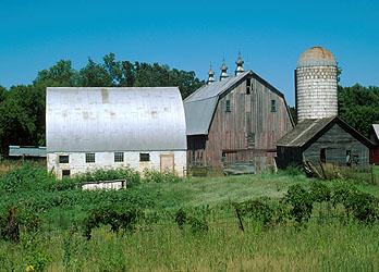 Dutch Style Barn In Stearns County Minnesota
